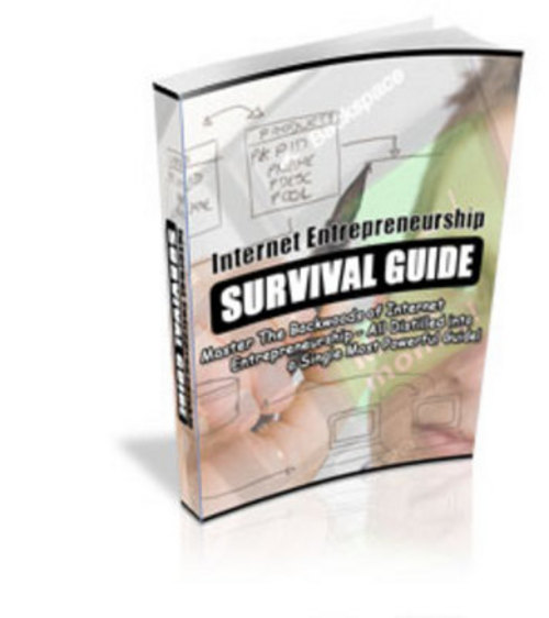 Product picture *NEW* Internet Entrepreneurship Survival Guide.2011