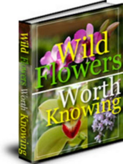 Product picture *NEW* WILD FLOWERS.zip 2011